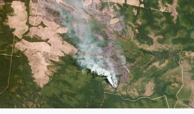 Thảm cảnh của thổ dân trước vụ cháy rừng Amazon tàn khốc nhất lịch sử: Chúng tôi đã khóc khi dập lửa, nhiều gia đình mất hết tất cả - Ảnh 2.