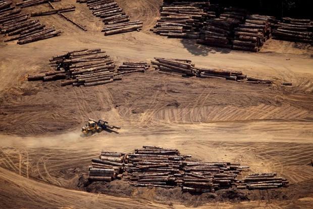 Loạt ảnh gây sốc về rừng Amazon bùng cháy với tốc độ kỷ lục: Khói có thể nhìn thấy từ ngoài không gian, các thành phố bị bao phủ mù mịt như tận thế - Ảnh 19.