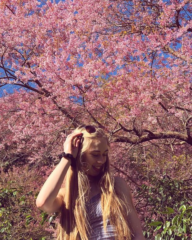Ơn giời, cẩm nang du lịch Thái Lan theo mọi mùa trong năm đây rồi: Tháng nào đi nơi nấy, khỏi lo mất vui! - Ảnh 4.