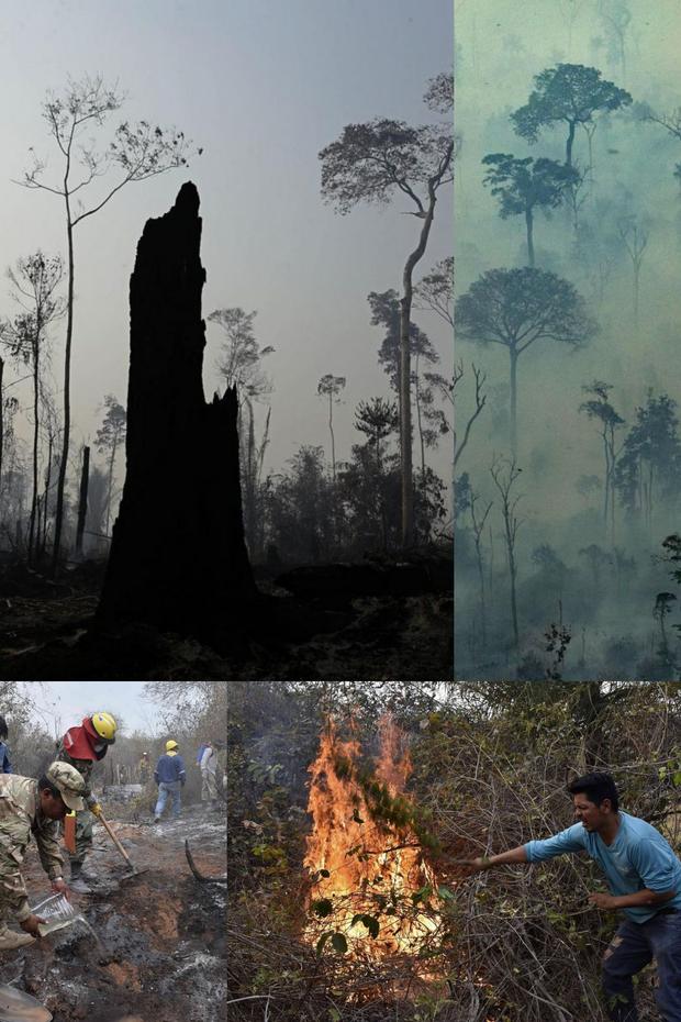 Loạt ảnh Amazon trước và sau đại nạn cháy rừng 2019: Lá phổi xanh ngày nào đã mang đầy bệnh tật do con người đầu độc - Ảnh 15.