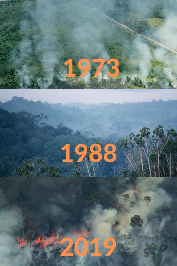 Loạt ảnh Amazon trước và sau đại nạn cháy rừng 2019: Lá phổi xanh ngày nào đã mang đầy bệnh tật do con người đầu độc - Ảnh 4.