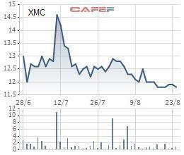 Xuân Mai Corp (XMC): Lãi ròng nửa đầu năm giảm mạnh 65%, nợ phải trả cao gấp 5 lần vốn - Ảnh 1.