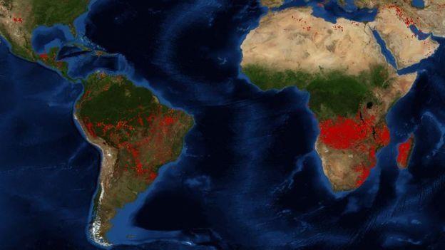 Châu Phi đang bị thiêu đốt, số vụ cháy rừng nhiều gấp 5 lần ở Amazon - Ảnh 1.