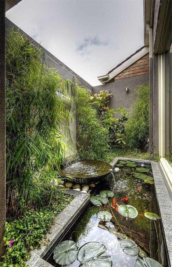 Góc vườn cùng hồ nước yên tĩnh.