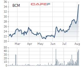 Becamex IDC (BCM) đạt 1.323 tỷ đồng LNST nửa đầu năm, giá cổ phiếu đang liên tục phá đỉnh - Ảnh 2.