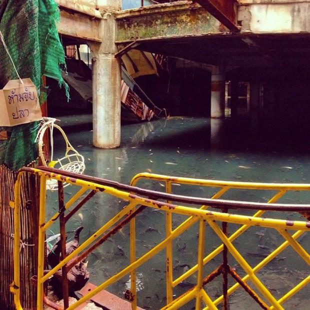 """Du lịch Thái Lan và 20 điều khiến du khách """"té ngửa"""": Chợ giữa đường ray là bình thường, chuối khổng lồ cũng không phải chuyện lạ! - Ảnh 14."""