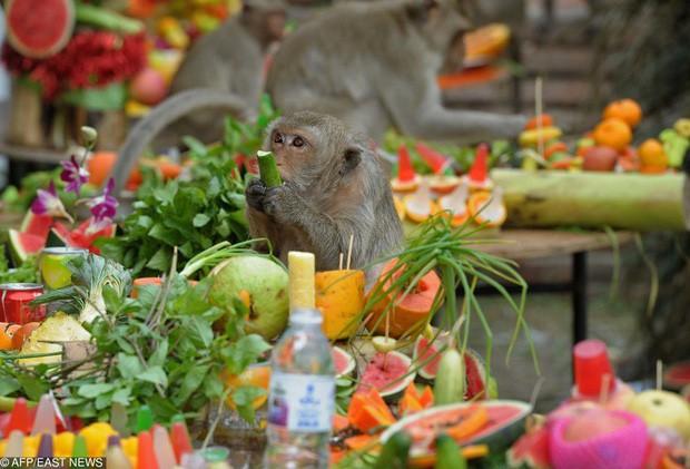 """Du lịch Thái Lan và 20 điều khiến du khách """"té ngửa"""": Chợ giữa đường ray là bình thường, chuối khổng lồ cũng không phải chuyện lạ! - Ảnh 15."""