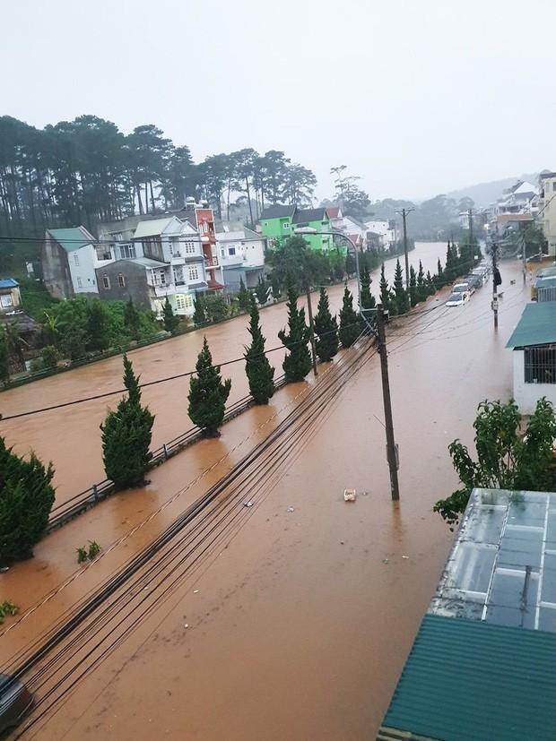 Nhiều người sốc nặng không nhận ra đây là Đà Lạt vì chìm trong biển nước, lật đật bỏ ngay tour du lịch vào cuối tuần này - Ảnh 6.