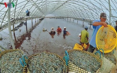 Xuất khẩu vào Mỹ: Doanh nghiệp Việt cần lưu ý gì? - Ảnh 1.