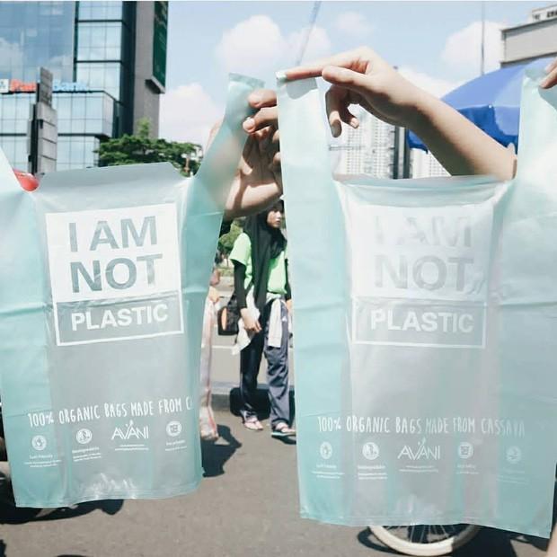 Chiếc túi này chính là thứ sẽ thay đổi toàn bộ cuộc chiến chống nhựa trên toàn thế giới: Chẳng khác gì túi nylon nhưng lại... bổ dưỡng cho sinh vật biển - Ảnh 3.