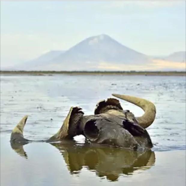 4 hồ nước bí ẩn nhất thế giới: Cái mơ mộng nên thơ, nơi ẩn chứa hàng trăm bộ xương người rùng rợn - Ảnh 5.