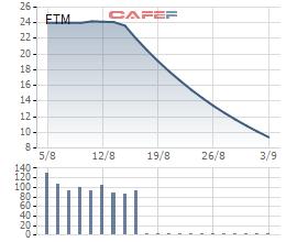 Bị cắt margin, game cổ phiếu bị vỡ, nhà sản xuất sợi cotton FTM đo sàn 14 phiên liên tiếp - Ảnh 1.