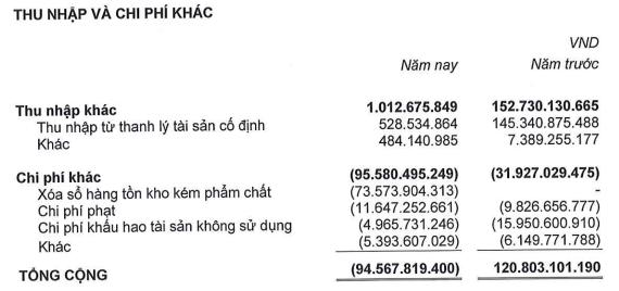 """""""Làm sạch"""" số liệu trước khi hợp tác với Thaco, Hùng Vương lỗ thêm 600 tỷ đồng sau kiểm toán - Ảnh 2."""