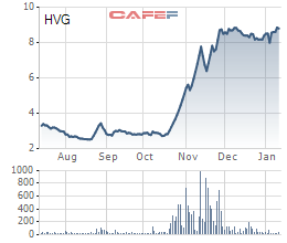 THADI đã sở hữu hơn 24% vốn tại Thuỷ sản Hùng Vương - Ảnh 1.