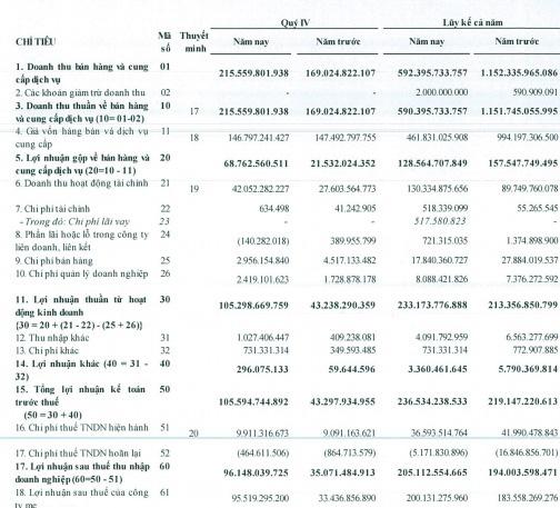 Hoàng Huy (HHS): Còn gần 2.000 tỷ đồng tiền gửi ngân hàng, LNST quý 4/2019 đạt gần trăm tỷ đồng - Ảnh 1.