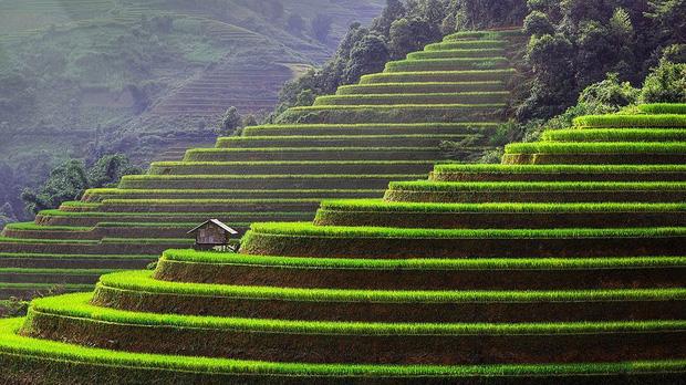 HOT: Ruộng bậc thang Mù Cang Chải vừa được công nhận Di tích Quốc gia đặc biệt, dự sẽ ngày càng hot trên bản đồ du lịch Việt - Ảnh 2.