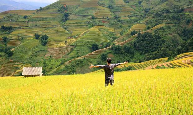 HOT: Ruộng bậc thang Mù Cang Chải vừa được công nhận Di tích Quốc gia đặc biệt, dự sẽ ngày càng hot trên bản đồ du lịch Việt - Ảnh 21.