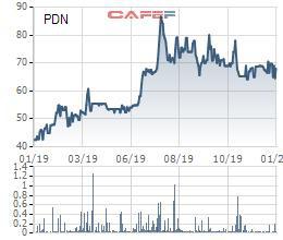 Cảng Đồng Nai (PDN) chuẩn bị tạm ứng cổ tức bằng tiền tỷ lệ 15% - Ảnh 1.
