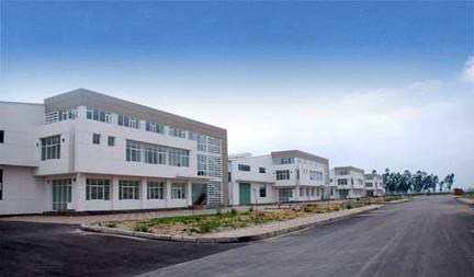 Khu công nghiệp Tràng Duệ (3)