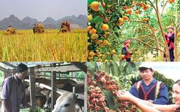 Những điểm sáng trong nền kinh tế Việt Nam 2017