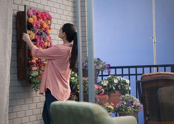 trong cay tren tuong dep nha ma don gian Thiết kế cây leo trên tường đẹp nhà mà đơn giản