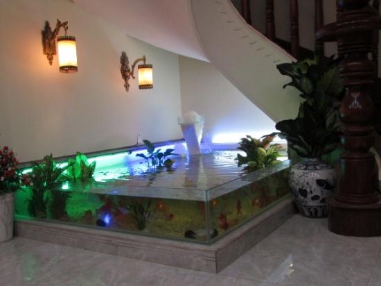 Với màu sắc của ánh sáng điện cùng bể cá cảnh ở gầm cầu thang sẽ làm cho không gian nhà bạn trở nên lung linh hơn