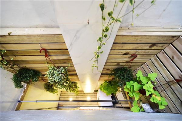 Thậm chí ngôi nhà mới cải tạo còn có cả khu vực tiểu cảnh để trồng cây xanh.