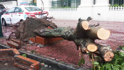 Lực lượng CSGT, cây xanh, thoát nước và duy tu của Hà Nội đã dốc toàn lực ra đường khắc phục hậu quả