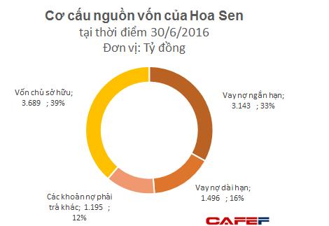 Phần lớn nợ vay của Hoa Sen được tài trợ bởi Vietinbank