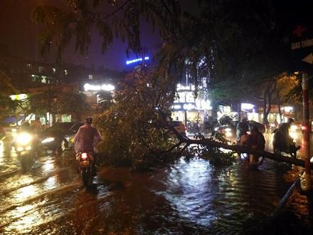 Mưa ngập, cây đổ tại đường Chùa Láng, Hà Nội tối 18/8. Ảnh: Otofun