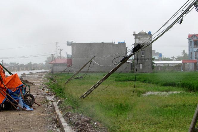 Một hàng cột điện gãy đổ tại xã Thái Xuyên, huyện Thái Thụy - Ảnh: HÀ THANH