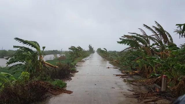Gió lớn ở Nam Định (Ảnh: Dân trí)