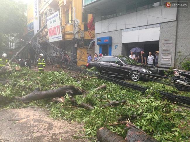 Tại đường Phan Chu Trinh (Hà Nội), bão lớn khiến nhiều cây đổ xuống chắn ngang đường. Ảnh: Đại Thế Nguyễn