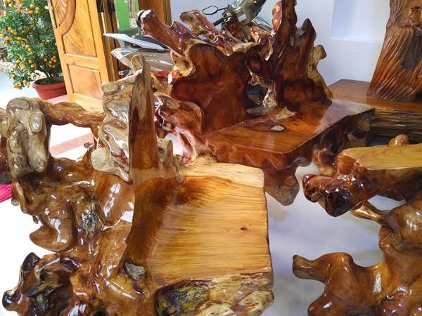 Những chiếc ghế cũng được làm từ một phần dễ của cây huỳnh đàn khủng này.