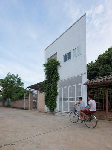 Căn nhà mang tên Binh House với giàn hoa giấy như một bức tường thẳng đứng vô cùng độc đáo thu hút sự chú ý của những người qua đường.
