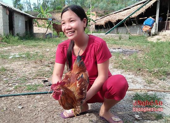 Sau 4-5 tháng nuôi gà đạt trọng lượng 1,5-1,8kg/con.