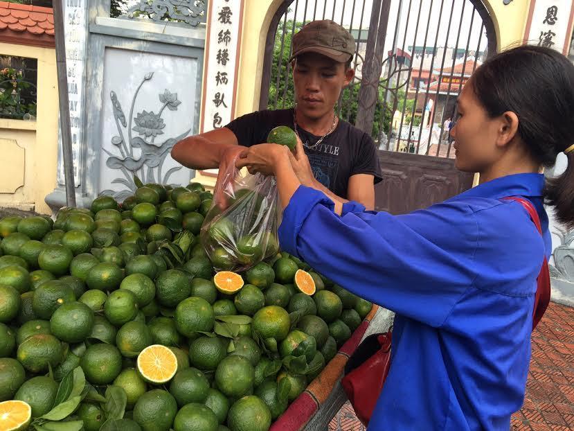 Nhiều người mua loại cam này về ăn vì nhẩm tưởng đó là cam sành Việt Nam