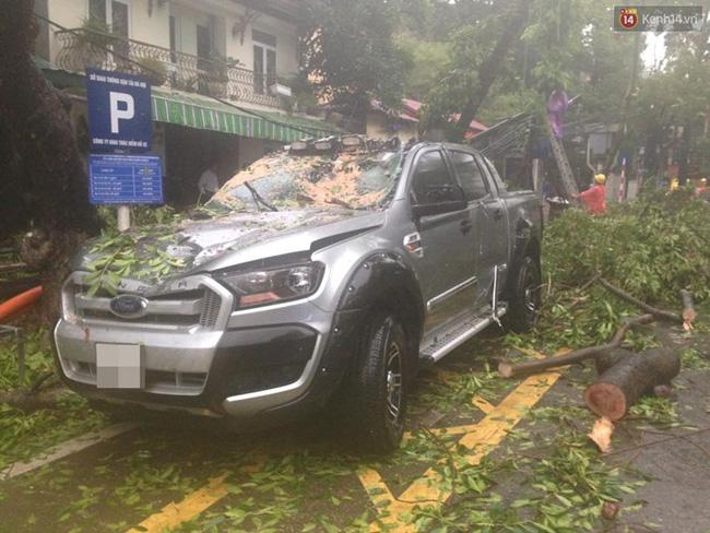 Một chiếc ô tô bị cây đổ trúng thân, hư hỏng nghiêm trọng. Ảnh: Đại Thế Nguyễn