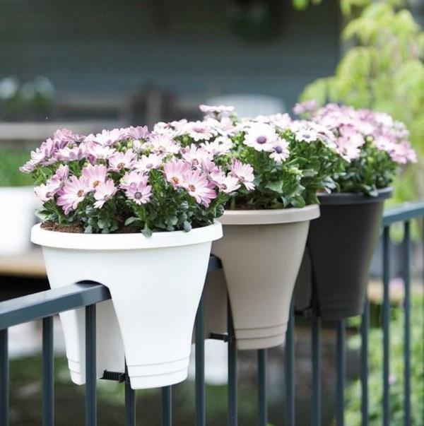 Lan can ban công luôn là vị trí tuyệt vời để bạn tận dụng. Bạn có thể mua chậu kẹp nhỏ nhiều màu sắc và trồng những loại hoa có tán rộng để tạo góc thư giãn cho căn nhà.