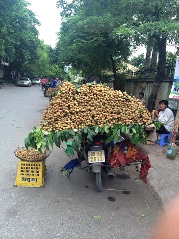 Các loại nhãn lồng, nhãn Thái được bày bán la liệt tại chợ, phố Hà Nội với giá 40.000-60.000 đồng/kg