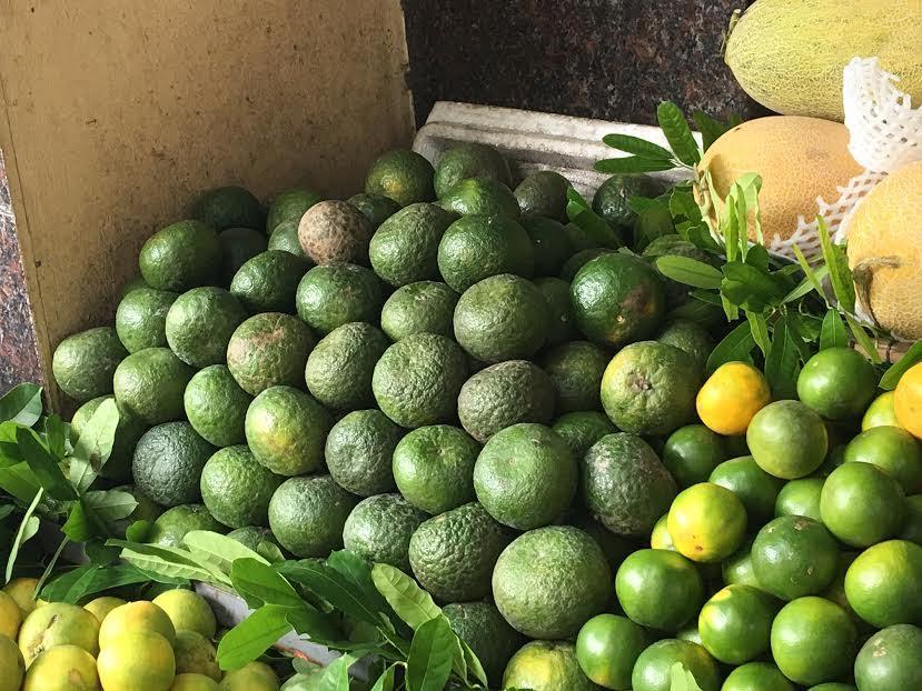 Cam sành Việt Nam quả to gấp đôi cam xanh Trung Quốc, đặc biệt, cam sành ở thời điểm hiện tại đang được bán ở mức giá 70.000-75.000 đồng/kg