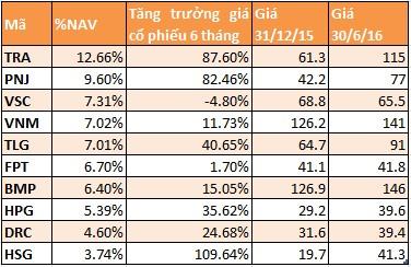 Top 10 cổ phiếu có tỷ trọng cao nhất trong danh mục của Vietnam Holding tại thời điểm 30/6