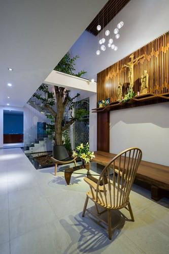 Phòng khách được bài trí khá đơn giản với chiếc ghế gỗ dài đơn sơ cùng bàn trà có thiết kế lạ mắt. Ngay cạnh cầu thang là cây khế lớn đang vươn cao lên tận tầng 2.
