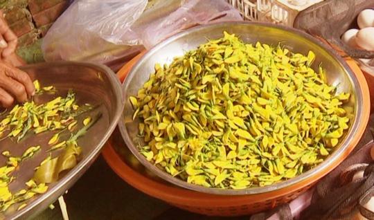 Bông điên điển có giá khoảng 60.000 đồng/kg