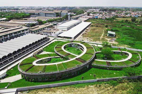 Còn đây là vườn rau khổng lồ trên mái trường mầm non ở Đồng Nai (Việt Nam). Ngôi trường được xây dựng mang hình dạng của loài cỏ ba lá. Điểm đặc biệt của ngôi trường này đó là toàn bộ khu vực mái đều được phủ màu xanh của cỏ cây hoa lá. Nơi đây còn là một khu vườn rộng lớn trồng rất nhiều rau xanh phục vụ cho chính các con trong trường.