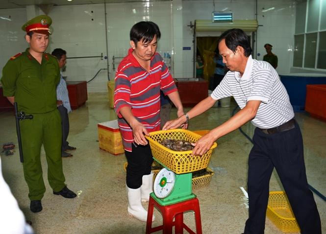 Số lượng tôm tạp chất thu tại hiện trường là hơn 70 kg