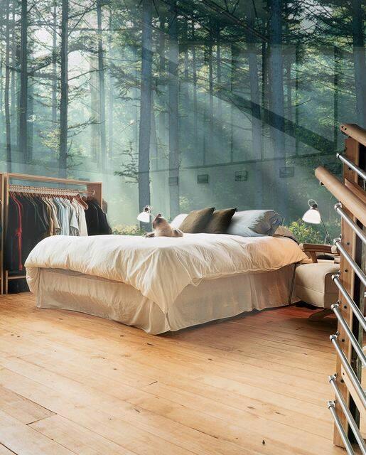 Không gian vô cùng trong lành và dễ chịu cho mỗi sáng thức dậy.