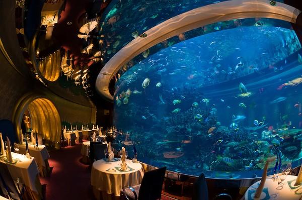 Đây là một trong ba bể cá khổng lồ của khách sạn. Có một đội gồm 7 chuyên gia về hải dương học sẽ chăm sóc cho 3 bể cá với 50 loại cá ở đây.
