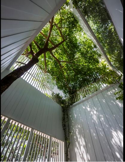 Vào mùa hè với cái nắng cháy da cháy thịt ở thành phố Huế, cây xanh sẽ mang đến bóng mát cho cả khu nhà.