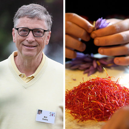 Món ăn yêu thích của Bill Gates, tỷ phú giàu nhất nước Mỹ là các thực phẩm có cho Saffron, loại gia vị được sản xuất từ nhụy của cây hoa nghệ tây. Đây là loại gia vị đắt tiền nhất thế giới nếu tính theo khối lượng. Với tài sản 76 tỷ USD, tỷ phú Bill Gates có thể mua lượng nhụy hoa nghệ tây đủ để nhồi vào 120.254 chiếc đệm cỡ lớn kiểu California.